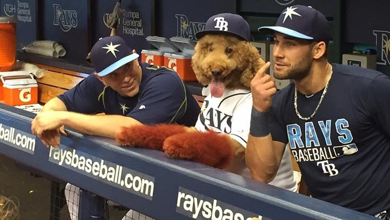 Max hangs out with the players in the dugout.