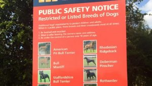 "Irish Politician In Trouble For Comments About ""Dangerous"" Dog Breeds"