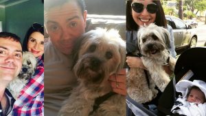 Celebrity Rescue Dog: 10 Things About Floyd With Beth Dover And Joe Lo Truglio