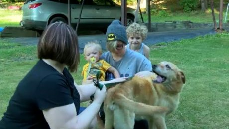 Real Life Pet Detective Reunites Family With Lost Dog After 4 Years