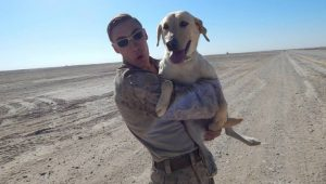 Afghanistan Veteran Reunited With Bomb-Sniffing Dog Partner In The United States