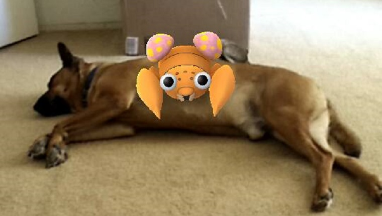 A Pokemon sits on a dog lying down