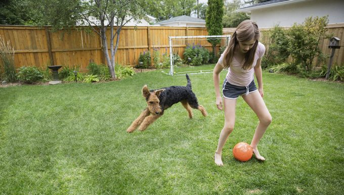 girl playing ball with dog
