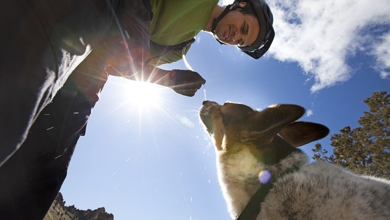 A man stops to give his dog a drink of water from a hydrations system, while on a mountain bike ride.