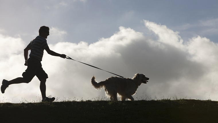 Man running with dog on lead