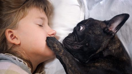 10 Things Dog Parents Think But Don't Say To Parents Of Children