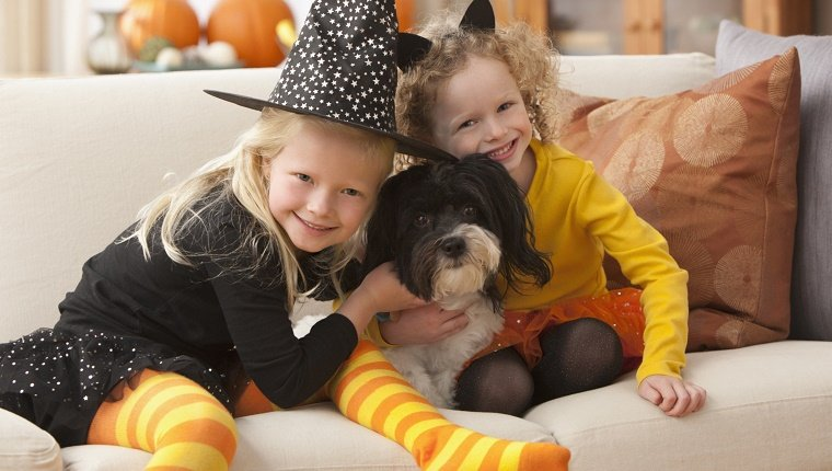 Caucasian girls in Halloween costumes hugging dog