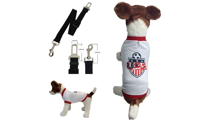 sports dog gifts 4