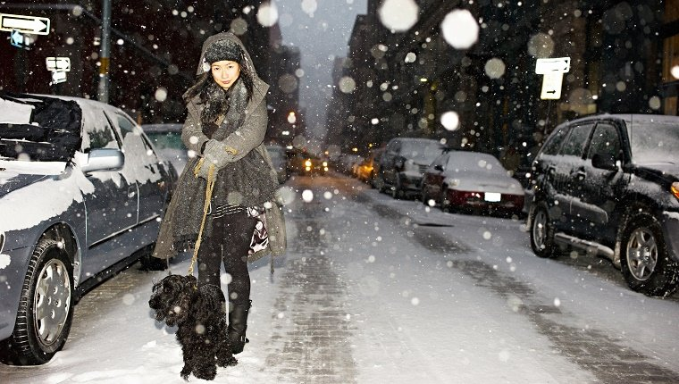 Woman walking dog in snow, New York City, USA