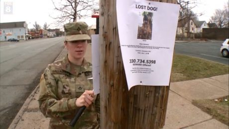 Man Gives Away Army Private's Dog And Refuses To Tell Where He Is