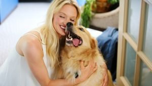 "10 Ways To ""Get Your Dog On"" If You Don't Have A Dog"
