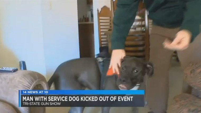 veteran-service-dog-forced-leave-gun-show-1