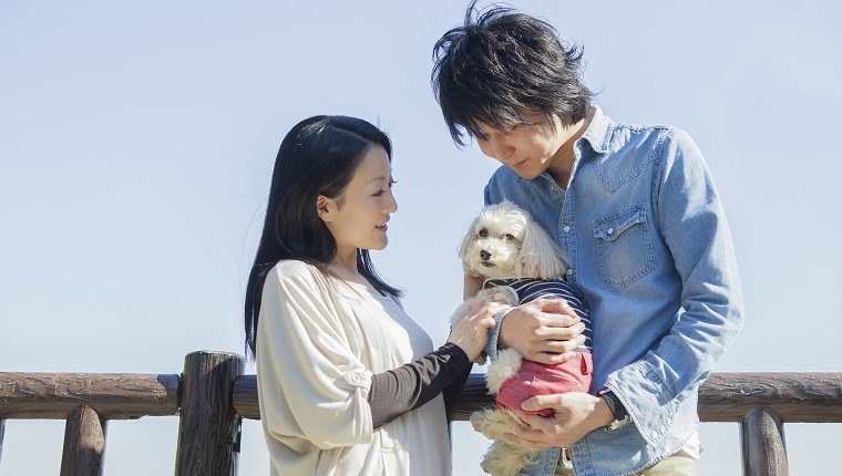 Japanese couple and their dog