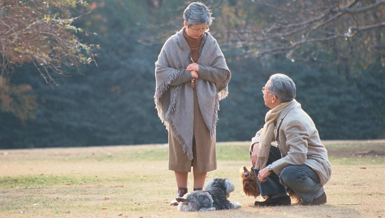 The old couple accompanied by the dog