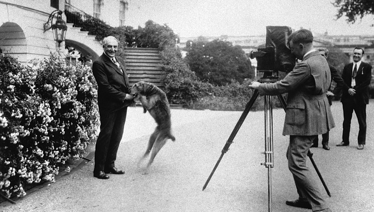 President Warren G. Harding (1865-1923) plays with his dog as a photographer takes a picture of them. Harding was the twenty-ninth president of the United States, serving from 1921 until his death in office in 1923..