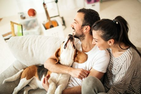 5 Reasons Why All Apartment Buildings Should Be Dog Friendly