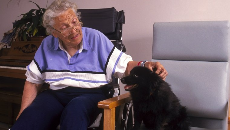 Patient and dog in hospital visiting pet program