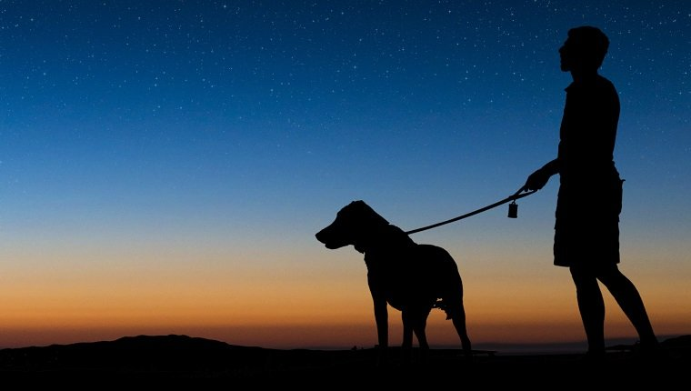 Man walking dog on a clear night