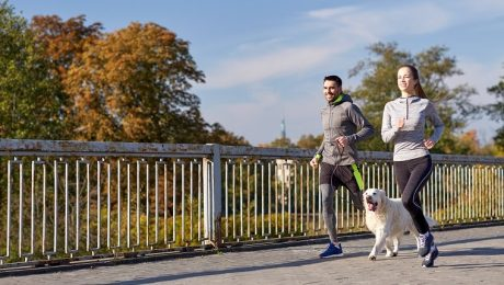 Is Jogging Or Running Safe For Dogs?