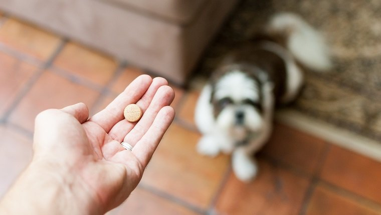 diazepam dosage for seizures in dogs