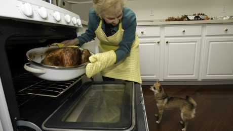 Dr. Mahaney's Thanksgiving Safety Tips For Pets