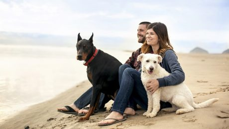 8 Great Dating Tips For Dog Lovers