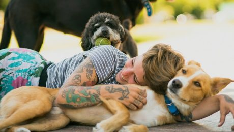 National Pet Week: 7 Awesome Things You Can Do For Dogs To Say Thanks