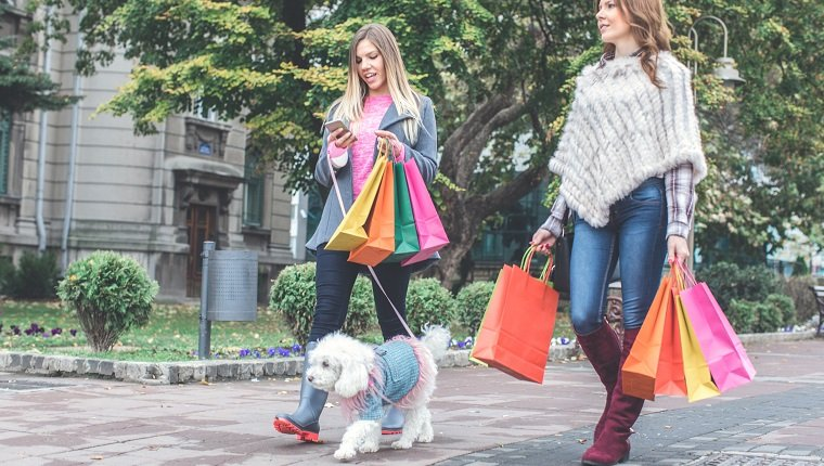 Two young women with shopping bags, returning from the shopping with a dog poodle.