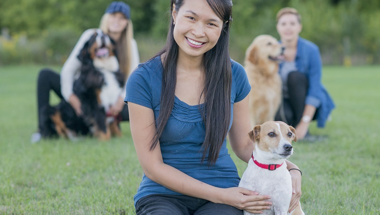 Beautiful young asian woman sitting on the grass in a park at a dog obedience class with her cute jack russell terrier in front of a group of other dogs and pet owners.
