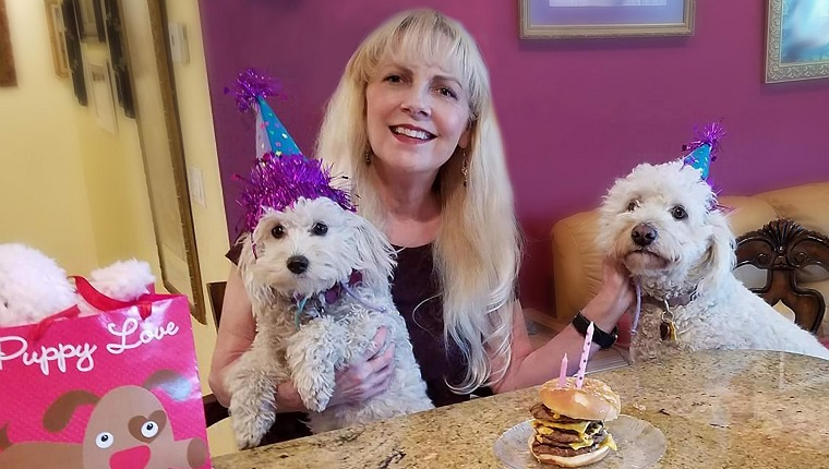 A blonde haired woman and her two dogs are having a birthday party. The dogs are wearing party hats. They are sitting at the counter and the birthday cake is a hamburger with candles in it. To the side is a gift bag with a dog on the front. The image was taken in Southern California.