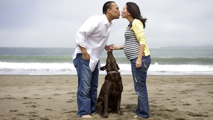 people kiss on beach with dog at their feet
