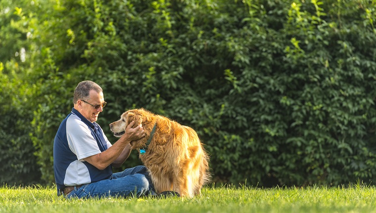 A middle aged Caucasian man sitting in the grass petting/rubbing the ears his senior Golden Retriever as the dog give him a paw at sunset. This setting could be his back yard or at a public park.