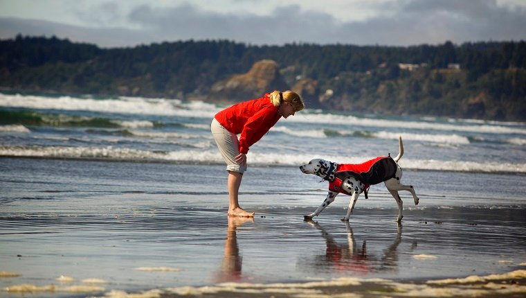 girl and dog, red jacket, Dalmatian, running northern California coast Mckinleyville Humboldt clam beach