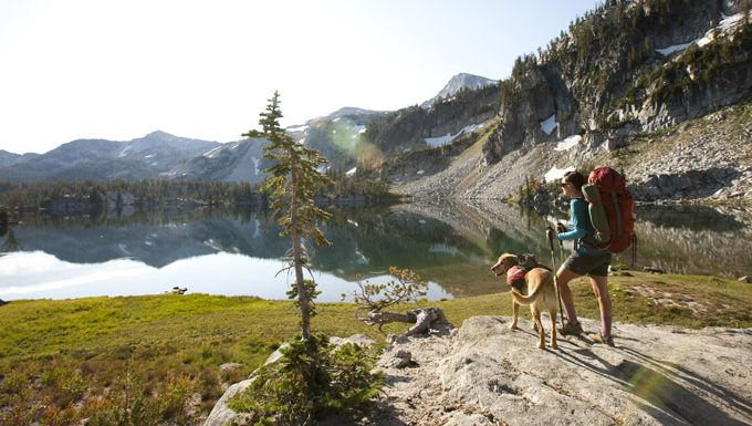 dog and person on hike