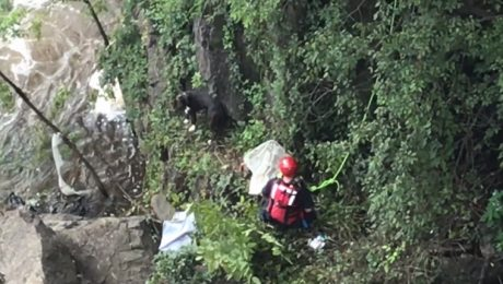 Firefighter Rappels Off Bridge To Save Dog Trapped Near Waterfall