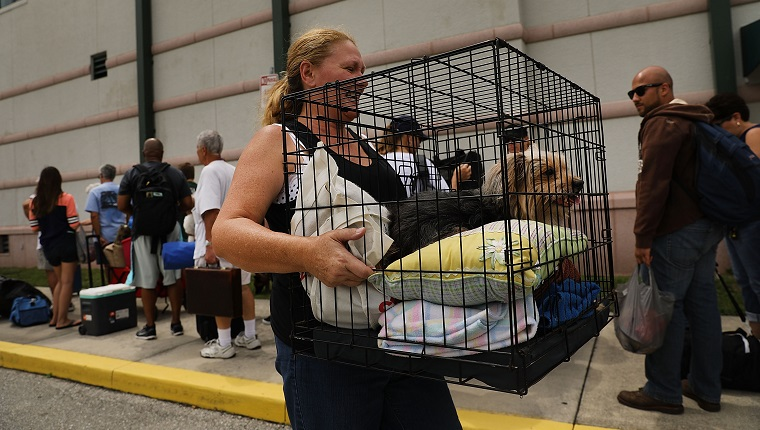 FORT MYERS, FL - SEPTEMBER 09: A woman carries her dog as people arrive at a shelter at Alico Arena where thousands of Floridians are hoping to ride out Hurricane Irma on September 9, 2017 in Fort Myers, Florida. The Fort Myers area could begin to feel hurricane-force winds from Irma by 11 a.m. Sunday and experience wind gusts over 100 mph from Sunday through Monday. (Photo by Spencer Platt/Getty Images)