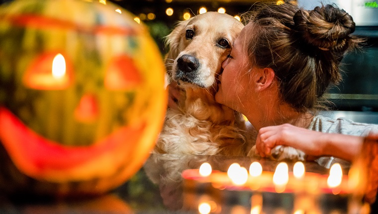 Woman kissing golden retriever dog halloween decoration. The scene is situated indoors in city apartment located in Sofia, Bulgaria (Eastern Europe). The picture is taken with Sony A7RIII camera.