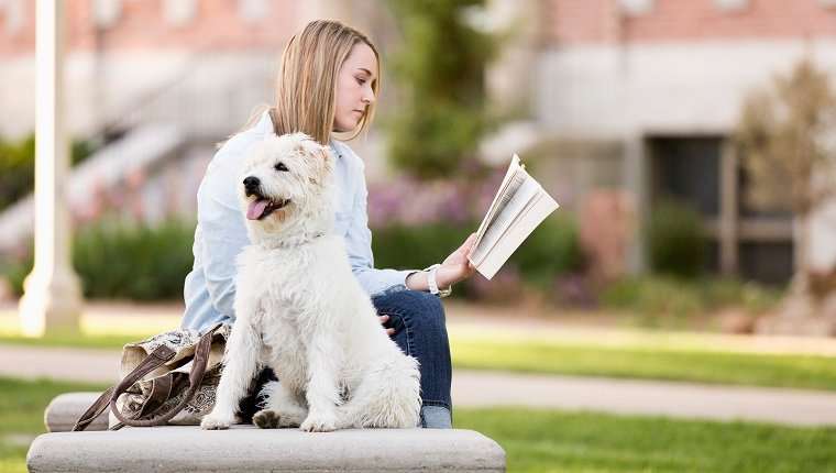Student with dog reading book on college campus