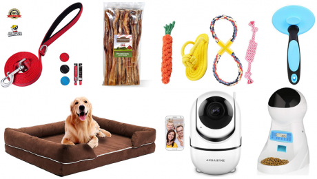 10 Items Dog Lovers Should Buy On Amazon's Black Friday 2018