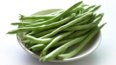 Can Dogs Eat Green Beans? Are Green Beans Safe For Dogs?