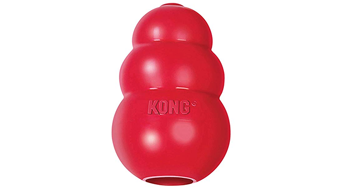 Red rubber Kong toy