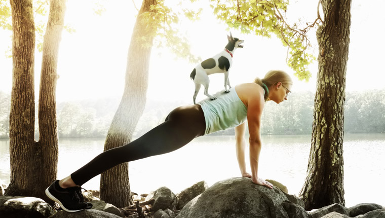 dog standing on owner doing doga