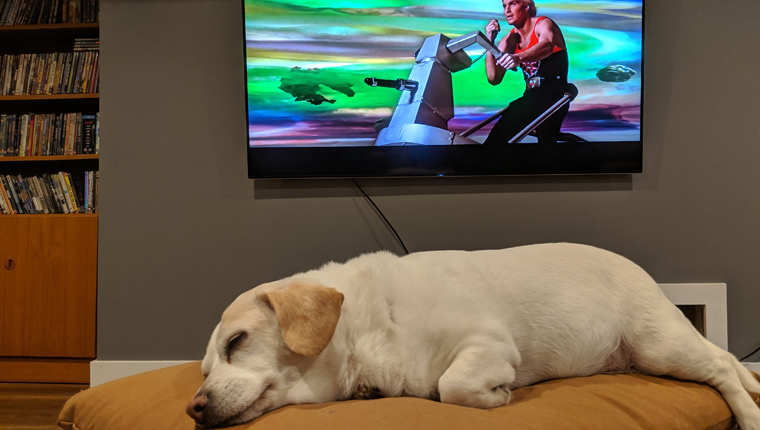 "dog ""watching"" flash gordon"