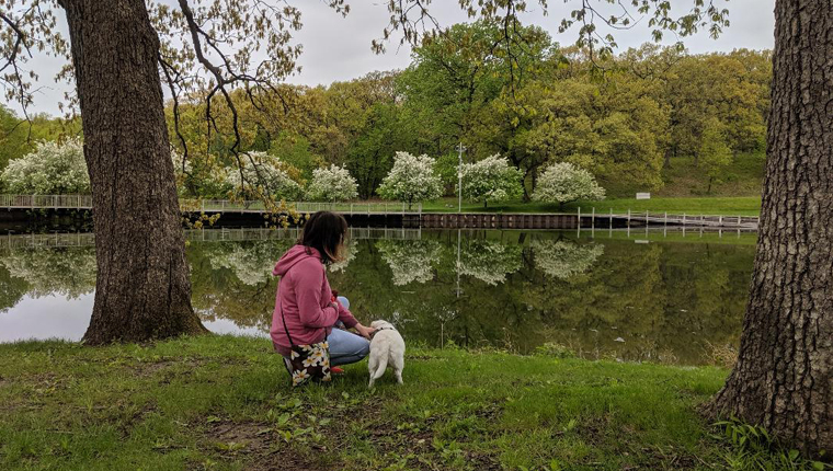 dog and human by pond