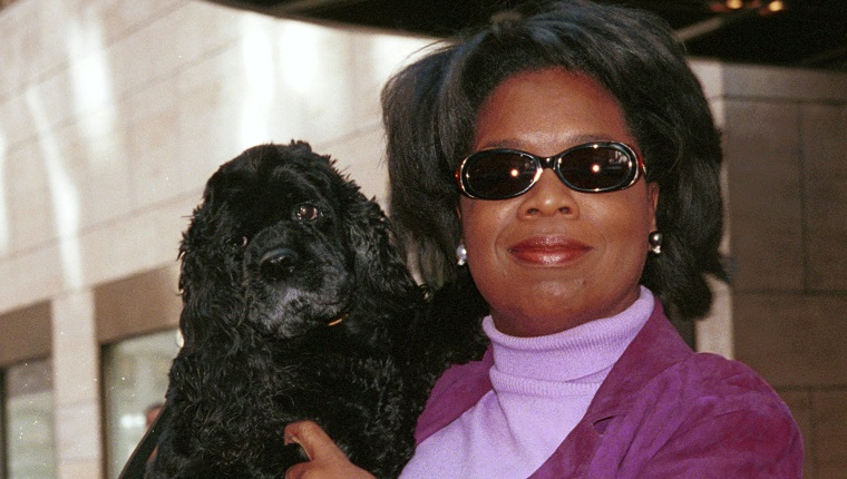 379384 03: ***EXCLUSIVE*** (NO ITALY) Oprah Winfrey holds her dog Solomon in front of the New York City hotel before getting into her limo September 29, 2000.