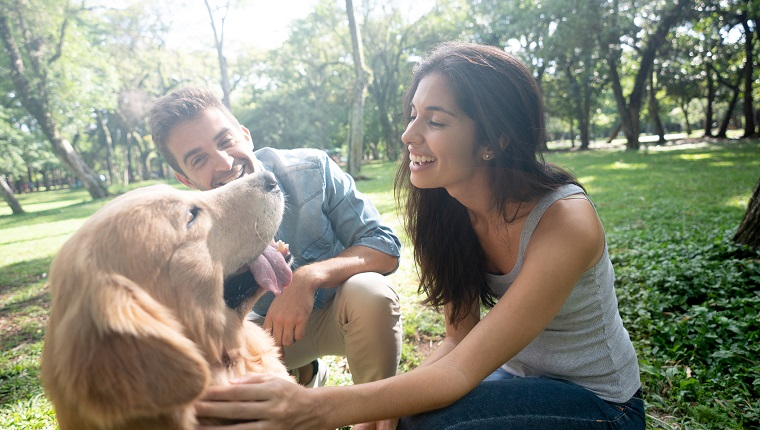 Portrait of a happy couple having fun at the park with their beautiful dog - lifestyle concepts