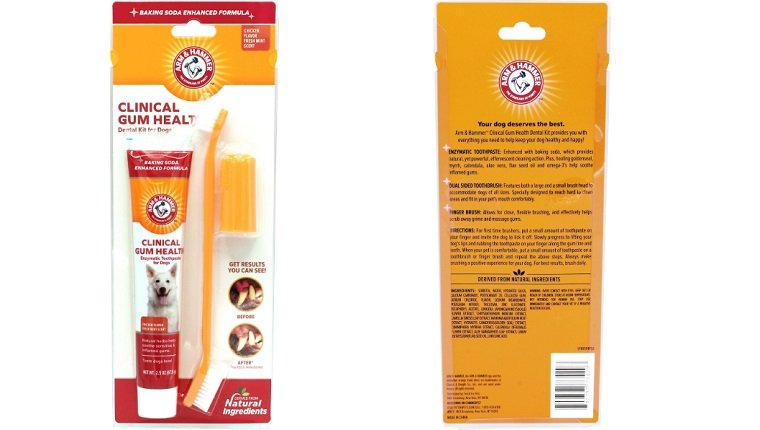 dog brush and toothpaste kit