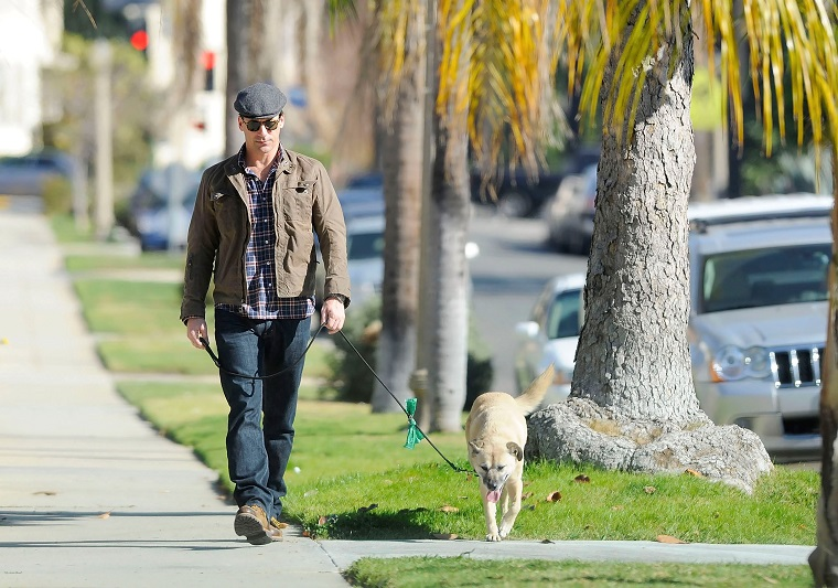 Jon Hamm Out For A Walk With His Rescue Dog, Cora