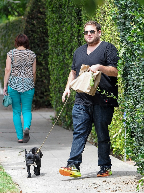 Jonah Hill With His 'Daughter' French Bulldog Carmella