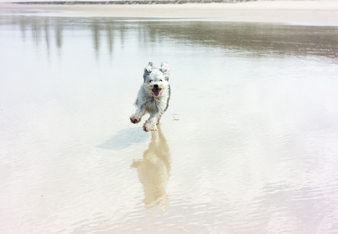 I'd be happy too at the beach!
